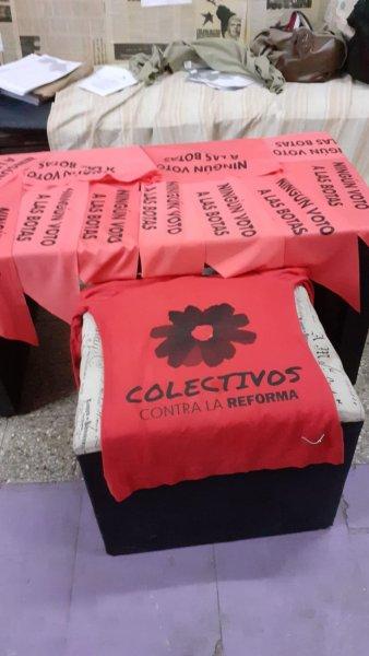 Entrevistamos a Colectivos contra la Reforma luego de la votación del domingo