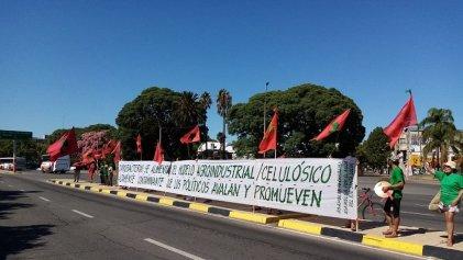 Movimientos ambientalistas denuncian la situación de lagos y ríos en Uruguay
