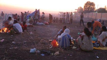 Masacre en Etiopía: Amnistía Internacional denunció crímenes de guerra contra civiles de Tigray