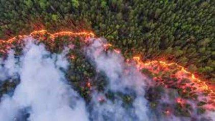 Incendios en Siberia llegan al Polo Norte