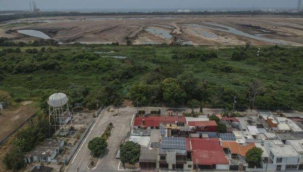 Destruyen manglares para construir una refinería en área protegida de México